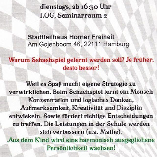 Шахматы для детей Schachzwerge Hamburg